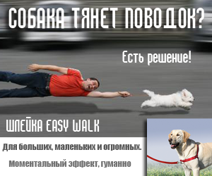 Шлейка Easy walk собака тянет поводок rel=
